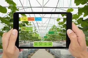 green house climate control